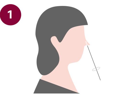 Testablauf COVID-19 Antigen Test 1